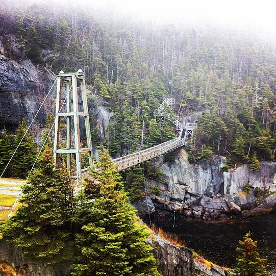 Suspension Bridge, La Manche Provincial Park