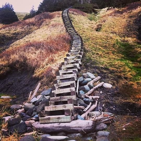 Green Gardens Trail, Gros Morne